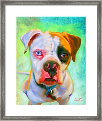 American Bulldog Art Framed Print by Iain McDonald