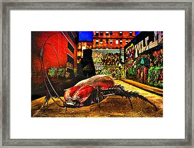 American Cockroach Framed Print by Bob Orsillo