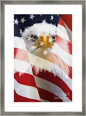American Flag And Bald Eagle Montage Framed Print by Tim Gainey