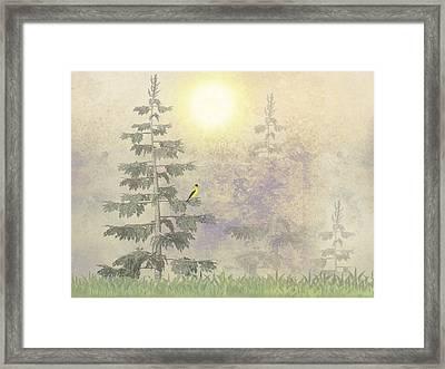American Goldfinch Morning Mist  Framed Print by David Dehner