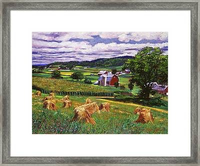 American Heartland Framed Print by David Lloyd Glover