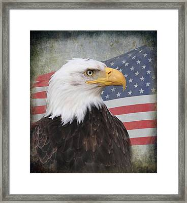 American Pride Framed Print by Angie Vogel