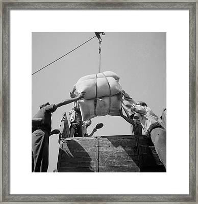American White Flour Is Loaded Onto Framed Print by Stocktrek Images