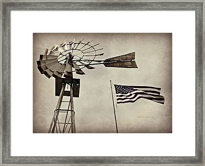 Americana Framed Print by Chris Berry