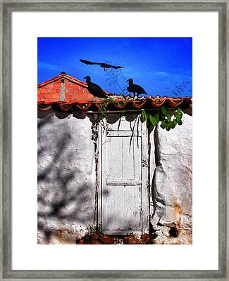Amigos Negros Framed Print by Skip Hunt
