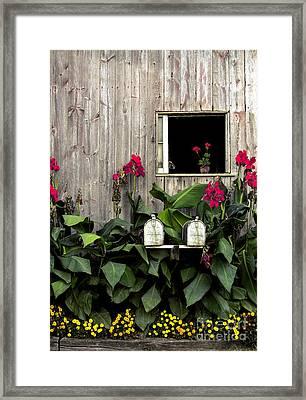 Amish Barn Framed Print by Diane Diederich