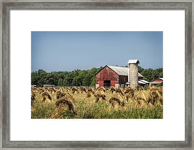 Amish Country Wheat Stacks And Barn Framed Print by Kathy Clark