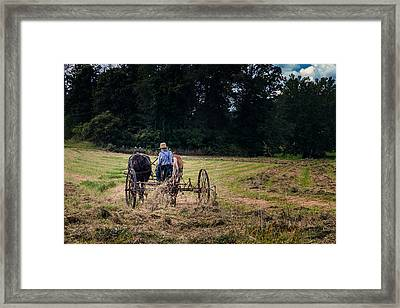 Amish Farming Framed Print by Tom Mc Nemar