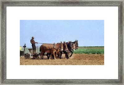 Amish Man Plowing The Fields Framed Print by Dan Sproul