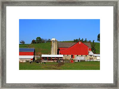 Amish Red Barn Framed Print by Dan Sproul