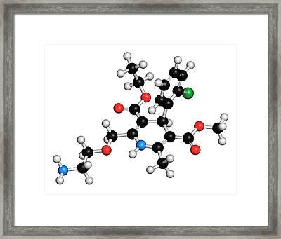 Amlodipine Hypertension Drug Molecule Framed Print by Molekuul