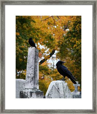 Among The Autumn Colors Framed Print by Gothicolors Donna Snyder