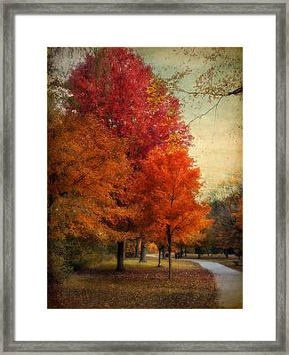 Among The Maples Framed Print by Jessica Jenney