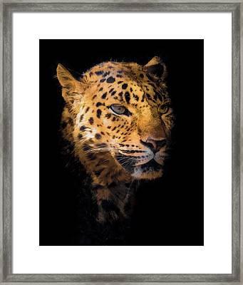 Amur Leopard Portrait 2 Framed Print by Ernie Echols