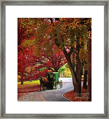 An Amish Autumn Ride Framed Print by Lianne Schneider