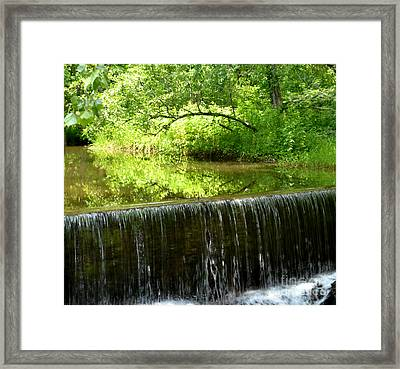 An Arch Trees Reflection Framed Print by Eva Thomas
