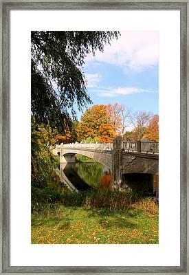 An Autumn Scene Framed Print by Kay Novy