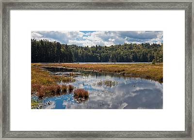 An Early Autumn Day On Cary Lake Framed Print by David Patterson