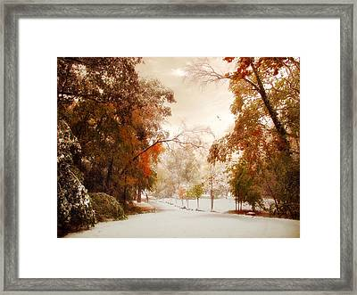 An Early Winter Framed Print by Jessica Jenney