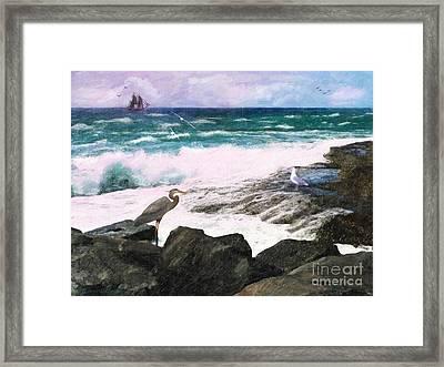 An Egret's View Seascape Framed Print by Lianne Schneider