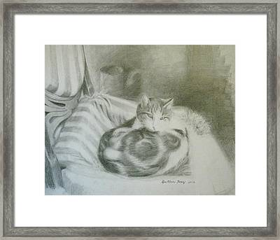 An Old Chair Framed Print by Heather Perez
