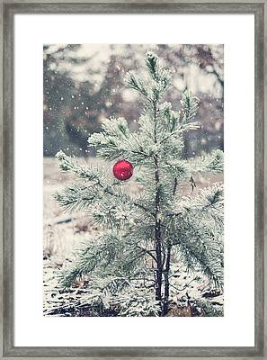 An Old Fashion Christmas  Framed Print by Terry DeLuco