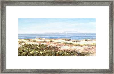 Anacapa Island In The Springtime Framed Print by Tina Obrien