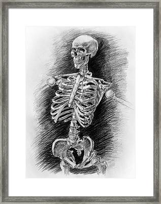 Anatomy Study Mister Skeleton Framed Print by Irina Sztukowski
