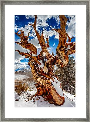 Ancient Eye Framed Print by Greg Clure