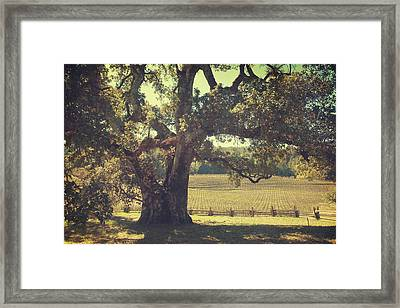 And I Smiled To Myself Framed Print by Laurie Search