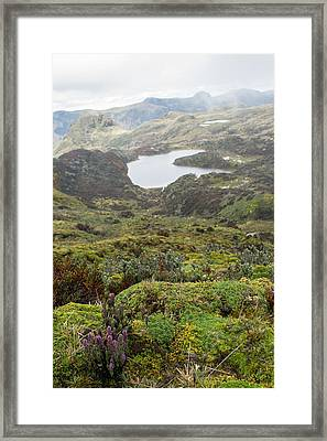 Andes Mountains Framed Print by Dr Morley Read