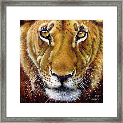 Andre Lion Framed Print by Jurek Zamoyski