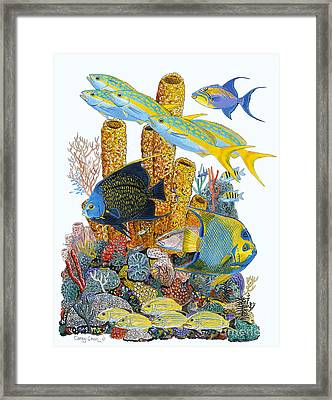Angel Fish Reef Framed Print by Carey Chen