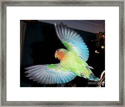 Angel Pickle Framed Print by Terri Waters
