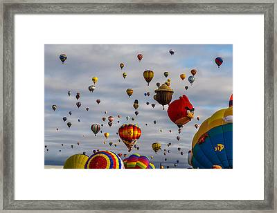 Angry Bird Shuns Smokey Bear D0169 Framed Print by Wes and Dotty Weber