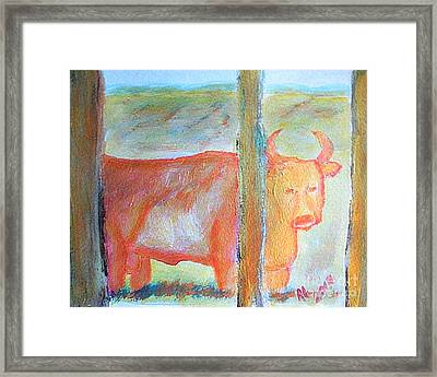 Angry Wild Bull Garland Utah 1 Framed Print by Richard W Linford