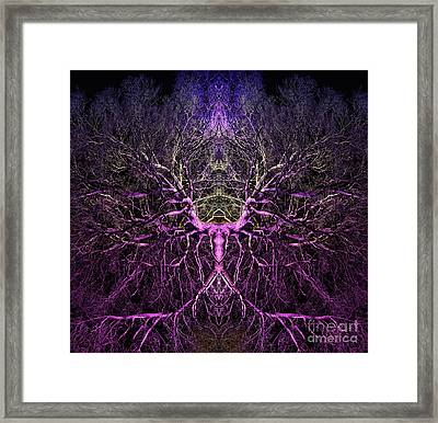 Anima Framed Print by Tim Gainey