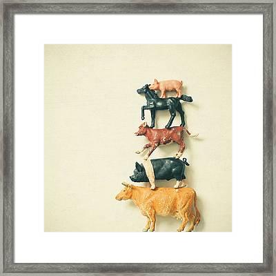 Animal Antics Framed Print by Cassia Beck