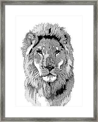 Animal Prints - Proud Lion - By Sharon Cummings Framed Print by Sharon Cummings