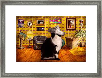 Animal - The Cat Framed Print by Mike Savad
