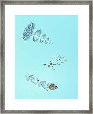 Animals And Laws Of Motion Framed Print by Mikkel Juul Jensen