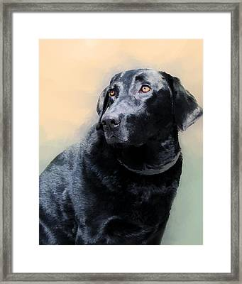 animals - dogs- Loyal Friend Framed Print by Ann Powell
