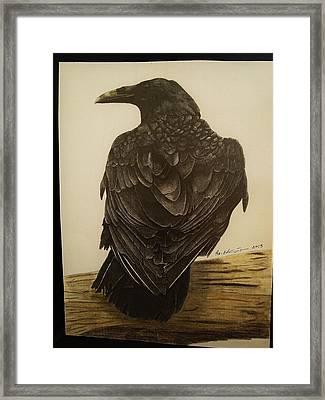 Animals Framed Print by Per-erik Sjogren