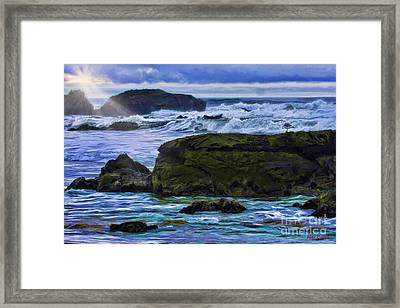 Ano Nuevo Seagull Framed Print by Blake Richards