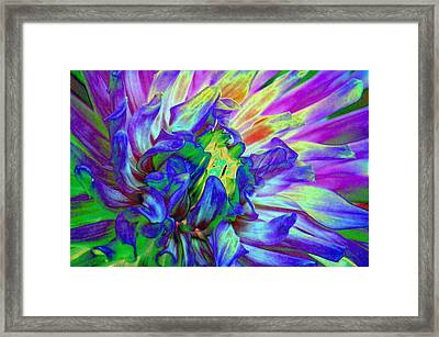 Another Blessing Framed Print by Candice Floyd
