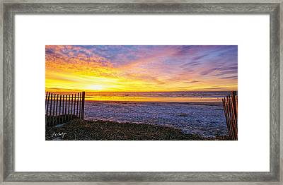 Sunrise With The Birds Framed Print by Phill Doherty