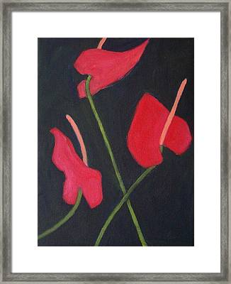 Anthuriums Framed Print by Mary Adam
