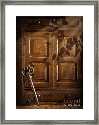 Antique Cabinet Framed Print by Amanda And Christopher Elwell