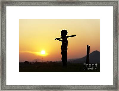 Any One For Cricket Framed Print by Tim Gainey