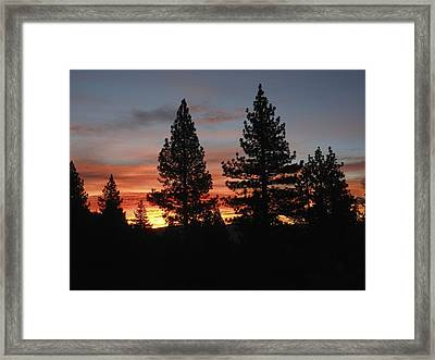 Aplenglow In Pines Framed Print by Don Kreuter